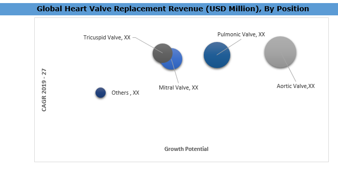 Global Heart Valve Replacement Market By Position