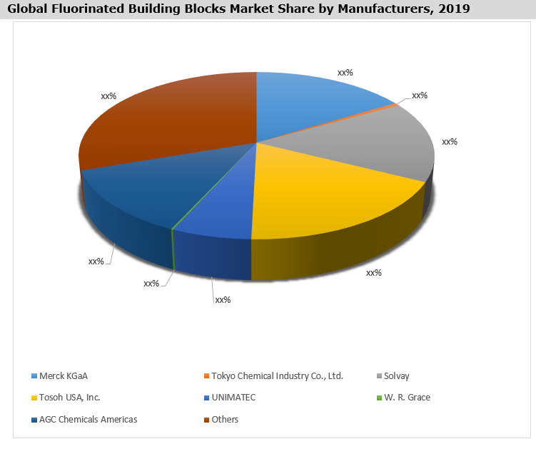 Global Fluorinated Building Blocks Market By Manufacturer