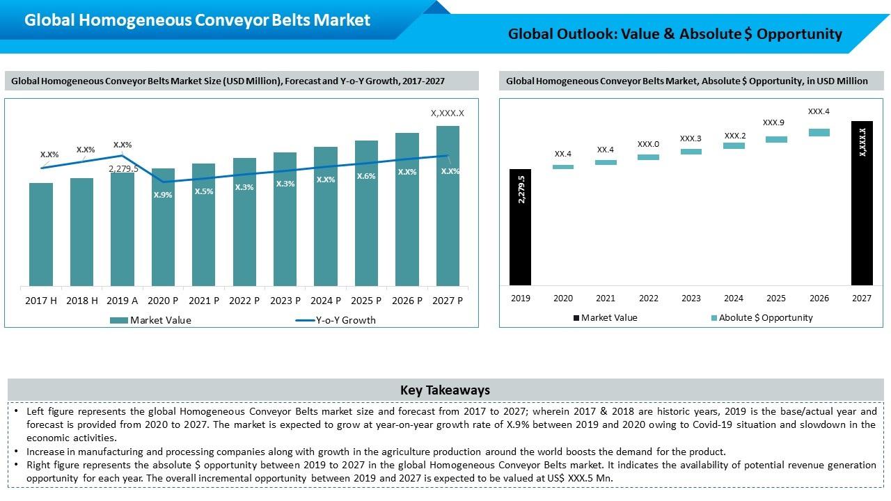 Global Homogeneous Conveyor Belt Market Outlook